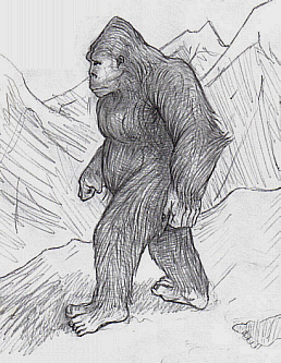 B5bugerbear Bigfoot