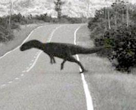 Dinozaurii nu au dispărut definitiv