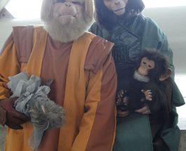 """Ne apropiem de scenariul """"Planetei maimuţelor"""""""