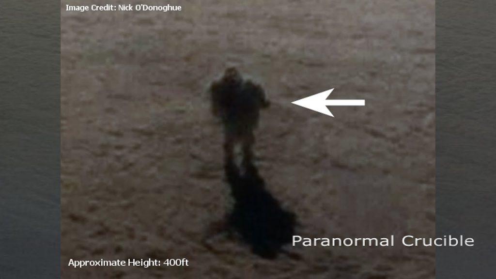 o-fiinta-misterioasa-plutea-pe-nori-la-30-000-de-picioare